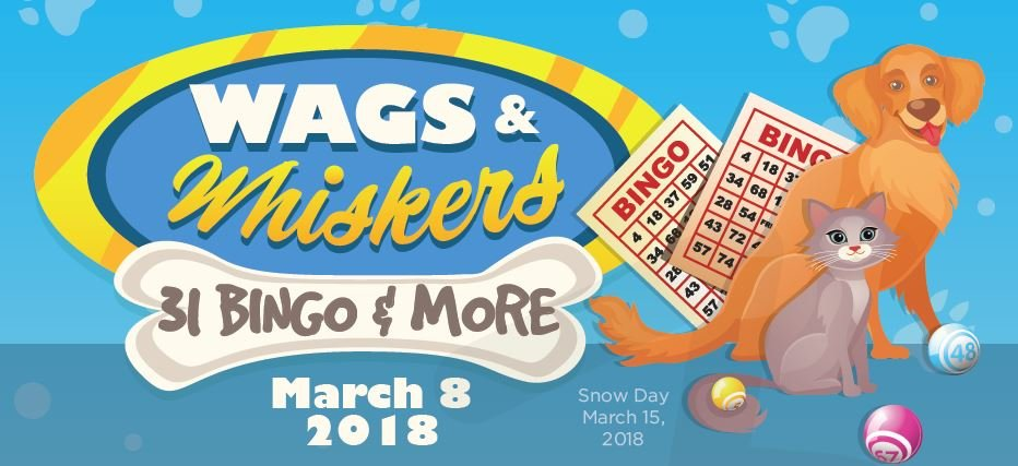 wags-and-whiskers-bingo