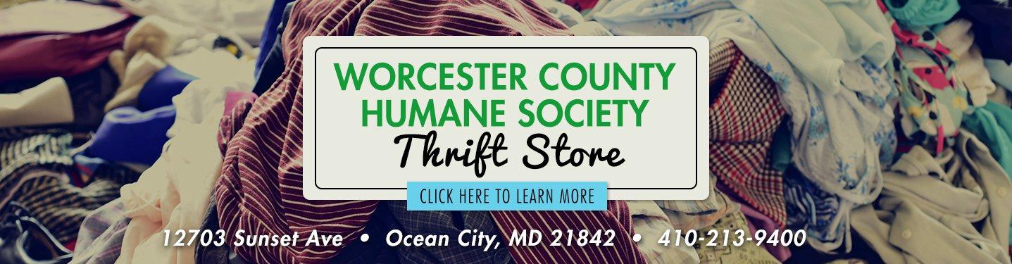 Worcester County Humane Society - No Kill Shelter | Maryland