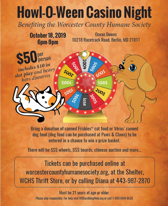 Adopt | Worcester County Humane Society | No Kill Shelter